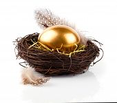 stock photo of egg whites  - Golden egg in nest on white background - JPG