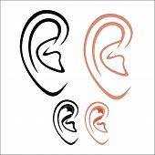 image of human ear  - Vector illustration  - JPG
