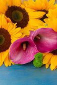 stock photo of calla  - bunch of   sunflowers callas and mums ob blue background - JPG