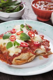 picture of enchiladas  - Mexican enchilada dish with tortillas - JPG
