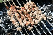 Shashlik On Spit