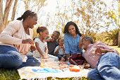 Multi Generation Family Enjoying Picnic In Park Together poster