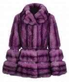 abrigo violeta
