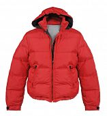 stock photo of jupe  - red jacket - JPG