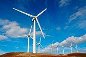 picture of wind-turbine  - Wind turbines farm on sunset in winter - JPG