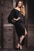 Fashion Portrait Of Beautiful Young Woman In Sexy Black Dress Near With Wood Wall. Elegant Dark Even poster