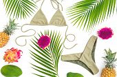 Summer Fashion Concept. Tropical Fruits And Bikini Swimwear On White Background. Flat Lay, Top View. poster