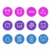 Illustration Of 12 Animal Icons Line Style. Editable Set Of Pet Poo, Kibble, Dog Food In Can And Oth poster