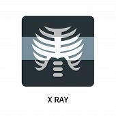 X Ray Icon Isolated On White Background. X Ray Icon Simple Sign. X Ray Icon Trendy And Modern Symbol poster