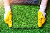 Greenering With An Artificial Grass Background. Landscape Designer Holds A Roll Of An Artificial Tur poster