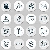 Zoology Icons Set With Mallard, Spider Web, Butterfly And Other Duck Elements. Isolated Vector Illus poster