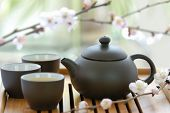 Chinese Tea Set with Teapot and cup