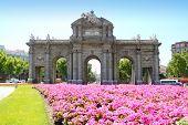 Madrid Puerta de Alcala with flower gardens in Spain