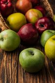 Wicker Basket With Scattered Multicolored Apples On Wooden Table poster