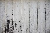 White Painted Wooden Board Photo Texture. Natural Wood Background. Distressed Rough Lumber Board. Na poster