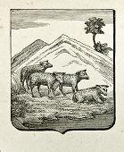 Wappen von Victoria (britische Kolonie). Illustration von Alwin Zschiesche, veröffentlicht am
