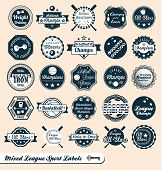 Vector Set: Vintage Style Mixed Sports Labels