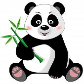 stock photo of pandas  - Sitting cute little panda with bamboo isolated on white background - JPG