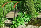 Little Wooden Bridge In A Garden
