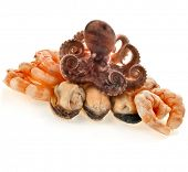 Marine delicatessen cocktail of  octopus ,mussels,  shrimp isolated on the white background