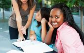 image of mating  - Young lady smiling at camera while friends study in background - JPG