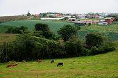 Tierras de labrantío en Costa Rica