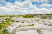 The Burren National Park limestone landscape, Ireland