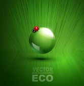 vector element for ecological design with ladybug