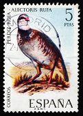 Postage Stamp Spain 1971 Red-legged Partridge, Bird