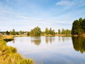 picture of boggy  - small village pond with reflections of trees - JPG