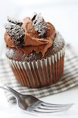 chocolate butterfly cupcake,dusted with icing sugar
