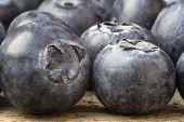 Macro Image Of Fresh Summer Blueberries
