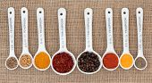 Spice selection in white china spoons with millilitre measurement over hessian background.