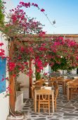Restaurant On The Narrow Street Of The Island In Greece With Tables And Shrubs Flowers