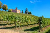 Medieval castle of Grinzane Cavour among vineyards on the downhill under clear blue sky in Piedmont,