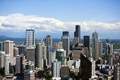 pic of view from space needle  - View from Space Needle - JPG