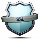 detailed illustration of a coat of arms with SSL writing, symbol for internet security, eps 10 vecto