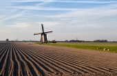 Dutch Windmill By Plowed Field