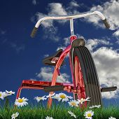 picture of tricycle  - illustration of a red tricycle on green grass - JPG