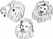 illustration with lion heads isolated on white background