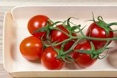 Tomatoes In The Packing Box