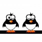 Two Funny Bird Vector Illustration