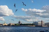 St. Petersburg. View On Vasilevsky Island