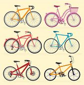 Bicycles. Vector.