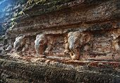Ancient Wall With Elephants, Polonnaruwa, Sri Lanka