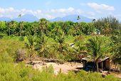 Philippines rural landscape.