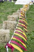 Red and yellow bunting