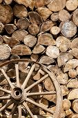 Heap Of Firewood And Old Broken Wheel