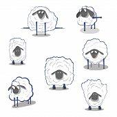 Lamb Sheep Icons