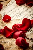 Music Notes With Rose Petals